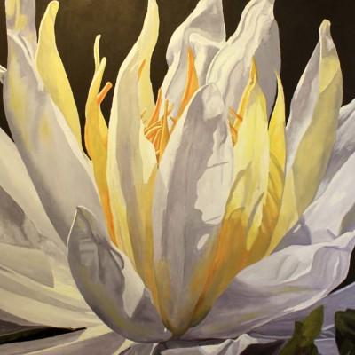 Colleen Dyson, Nucifera, Oil, 36x36