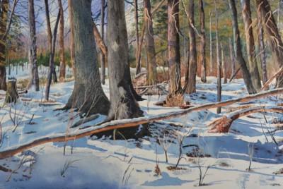 Roy Tibbits, Winter Sentinels, Watercolor, 15x22